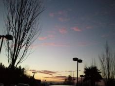 Afternoon clouds, but no bird