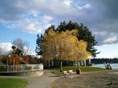 At a park