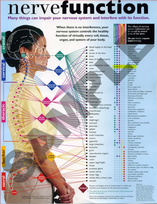 NerveFunction
