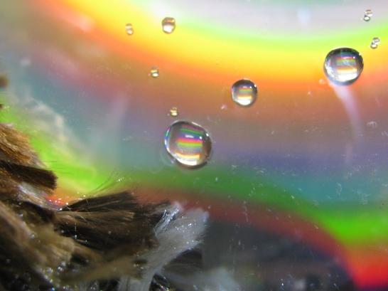 Colorful drops - Canon