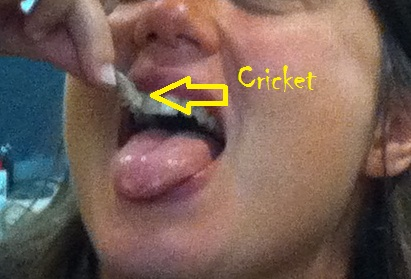 That's me eating a cricket. Cropped to preserve the identity of OG who was also pictured...