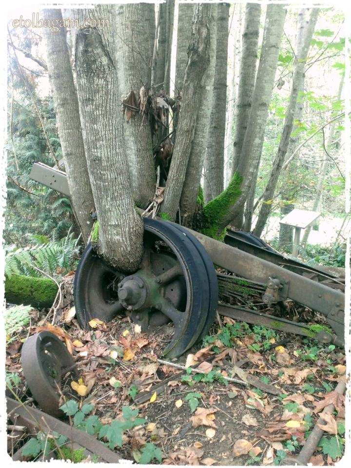 Tree on Wheels